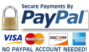 PaypalSecurity 311 300x177 - Blue Skies And Blood - By Edwin P. Hoyt