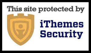 iThemes Security plugin 123 15 300x175 - Grand Finale - By Halsey Clark